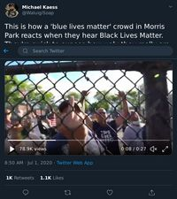 Screenshot_2020-07-02 Michael Kaess on Twitter This is how a 'blue lives matter' crowd in Morris Park reacts when they hear[...].png