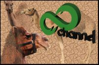 8channel-camels-logo.jpg